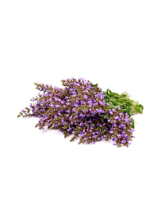 Salvijas ēteriskā eļļa (Salvia sclarea), 15ml